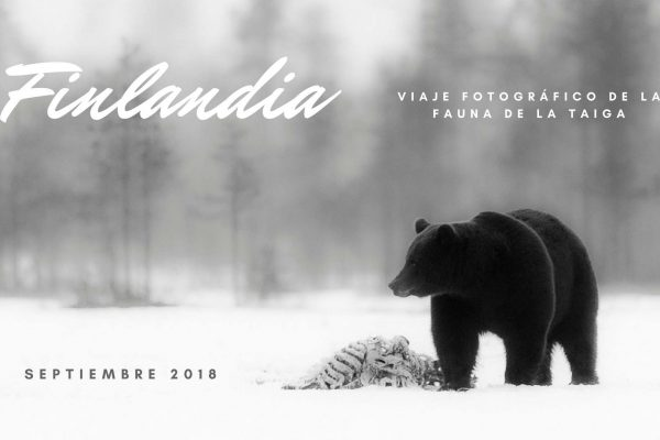 viaje fotográfico finlandia